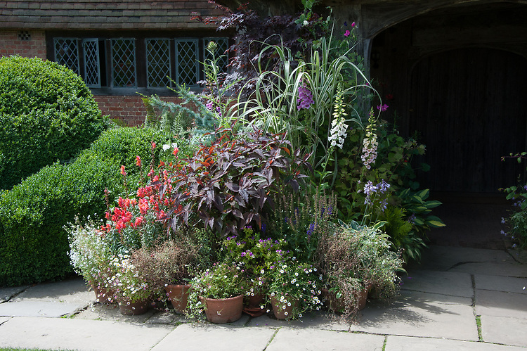 Pots and containers, front porch, Great Dixter, mid July.