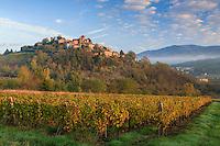 France, Rhône (69), région du Beaujolais, Ternand, le village et le vignoble en automne // France, Rhone, Beaujolais region, Ternand, the village and the vineyards in autumn