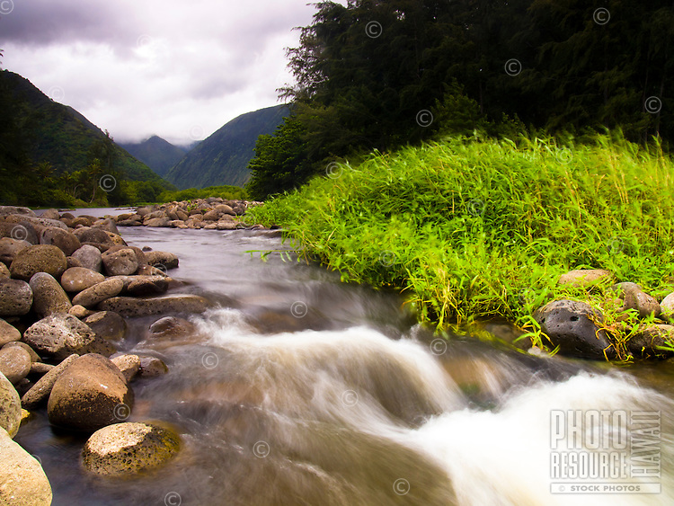 The Waipi'o Valley and its river, Hamakua, Big Island.