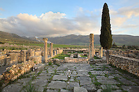 The House of Venus, 1st - 2nd century AD, named after a mosaic of Venus and her attendants emerging from the waves, found in the triclinium or dining room, Volubilis, Northern Morocco. This is one of the most sumptuous houses in the city amply decorated with mosaics, with an entrance vestibule giving onto the street, a bath complex with separate street entrance, a colonnaded peristyle courtyard, 2 reception rooms, a secondary peristyle courtyard with fountain and many small reception rooms and bedrooms. Volubilis was founded in the 3rd century BC by the Phoenicians and was a Roman settlement from the 1st century AD. Volubilis was a thriving Roman olive growing town until 280 AD and was settled until the 11th century. The buildings were largely destroyed by an earthquake in the 18th century and have since been excavated and partly restored. Volubilis was listed as a UNESCO World Heritage Site in 1997. Picture by Manuel Cohen