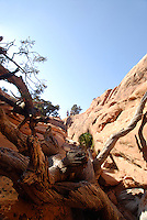 Hiking the Devil's Garden Trail, Arches National Park,  South East Utah,