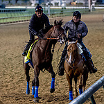 LOUISVILLE, KENTUCKY - APRIL 29: Game Winner, trained by Bob Baffert, exercises in preparation for the Kentucky Derby at Churchill Downs in Louisville, Kentucky on April 29, 2019. Scott Serio/Eclipse Sportswire/CSM