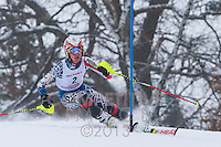 2013 MN Section 5 Alpine Ski Meet AM Run