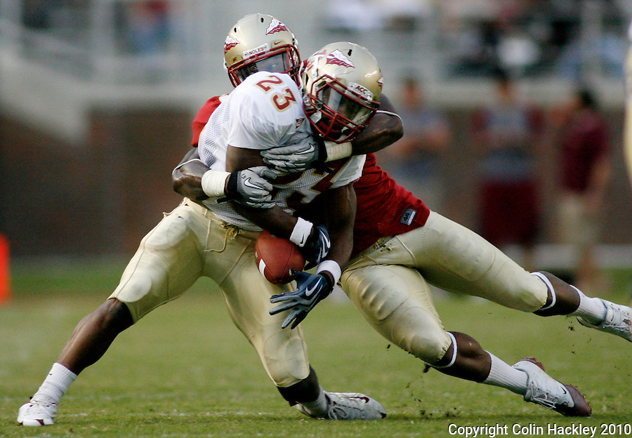TALLAHASSEE, FL 4/10/10-FSU-SPRING FB10 CH-Garnet's Nigel Bradham tries to separate the ball and Gold's Chris Thompson from each other during half Spring Game action Saturday at Doak Campbell Stadium in Tallahassee. .COLIN HACKLEY PHOTO