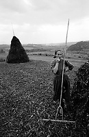 ROMANIA / Maramures / Valeni / Setember 2003..A woman gathers hay in preparation for making a haystack. Farm implements are all hewn out of wood, including the pegs for rakes. ..© Davin Ellicson / Anzenberger..