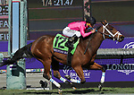 November 2, 2019: Belvoir Bay, ridden by Javier Castellano, wins the Breeders' Cup Turf Sprint on Breeders' Cup World Championship Saturday at Santa Anita Park on November 2, 2019: in Arcadia, California. Casey Phillips/Eclipse Sportswire/CSM