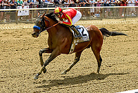ELMONT, NY - JUNE 09: Hoppertunity  #2, ridden by Flavien Prat, wins the Brooklyn Invitational Stakes on Belmont Stakes Day at Belmont Park on June 9, 2018 in Elmont, New York. (Photo by Bob Mayberger/Eclipse Sportswire/Getty Images)