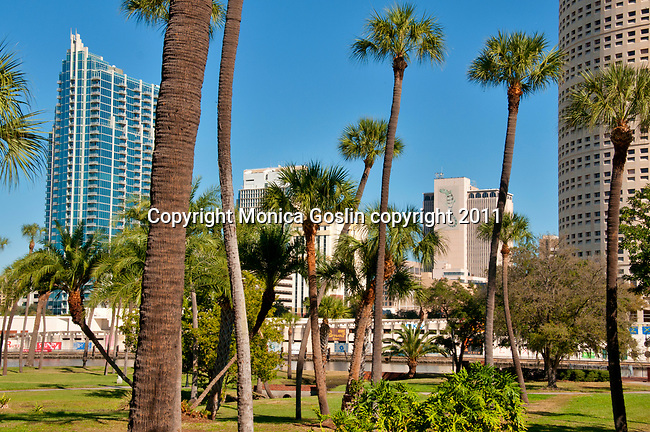 Plant Park with a view of the Hillsborough River and downtown Tampa, Florida