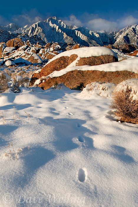 711700254c a rare snowfall in the alabama hills blankets the granite boulders with white and forms a foreground for mount langley lone pine peak and mount russel in the eastern sierras in central california