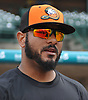 Jordany Valdespin of the Long Island Ducks speaks with Newsday sportswriter Jordan Lauterbach before the Ducks' season home opener at Bethpage Ballpark in Central Islip, NY on Friday, May 4, 2018.