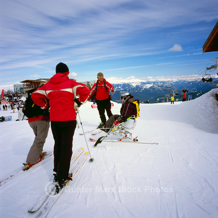 Disabled Skier / Adaptive Skier sit skiing at the Roundhouse Lodge on Whistler Mountain, Whistler Ski Resort, BC, British Columbia, Canada