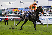 15th September 2017, Doncaster Racecourse, Doncaster, England; The William Hill St Ledger Festival, Gentleman's Day; Adam Kirby on Blue Laureate wins The Gary Reid Memorial British Stallion Studs EBF Maiden Stakes (Class 3) (Plus 10 Race)