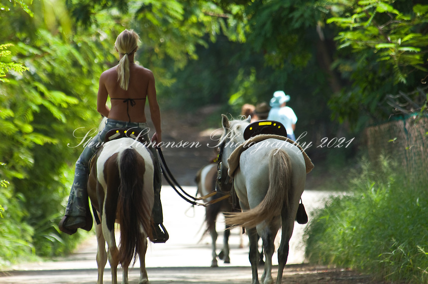 Horseback riders<br /> Rincon, Puerto Rico