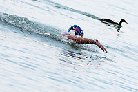 the Gold Medal Aurelie Muller of France seems competes against a duck during the race <br /> Women's 10Km <br /> Open Water Swimming Balatonfured<br /> Day 03 16/07/2017 <br /> XVII FINA World Championships Aquatics<br /> Lake Balaton Budapest Hungary  <br /> Photo Andrea Staccioli/Deepbluemedia/Insidefoto