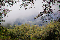 Pinal de Amoles, Quer&eacute;taro.- En la sierra gorda queretana, en el municipio de Landa de Matamoros se encuentra la comunidad de cuatro palos, un lugar en donde habitan y trabajan en su mayor&iacute;a mujeres.Cuatro Palos tiene un paisaje muy particular que se aprecia al llegar; posteriormente tienes que caminar por un sendero y subir 92 metros hasta llegar al cerro de la media luna, donde se pueden apreciar a lo lejos municipios aleda&ntilde;os y al bajar se puede degustar comida casera elaborada por las habitantes en un comedor comunitario.En esta localidad se pretende crear un espacio ecotur&iacute;stico, para que los visitantes puedan acampar por 50 pesos y disfrutar de la naturaleza. <br /> <br /> Foto: Yunuen Aviles /  Archivo / Obtura Press Agency.