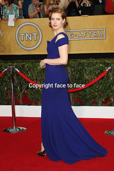 LOS ANGELES, CA - JANUARY 18: Amy Adams attending the 2014 SAG Awards in Los Angeles, California on January 18, 2014.<br /> Credit: RTNUPA/MediaPunch<br /> Credit: MediaPunch/face to face<br /> - Germany, Austria, Switzerland, Eastern Europe, Australia, UK, USA, Taiwan, Singapore, China, Malaysia, Thailand, Sweden, Estonia, Latvia and Lithuania rights only -