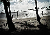 "Matheson Hammock Park<br /> From ""Color Blind"" series.<br /> Miami, 2007"