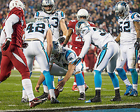 Charlotte, North Carolina - January 3, 2015: The Carolina Panthers beat the Arizona Cardinals 27-16 in an NFC wild card playoff game at Bank of America Stadium.