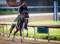 May 01, 2014: Wicked Strong prepares for the Kentucky Derby at Churchill Downs in Louisville Ky. Alex Evers/ESW/CSM