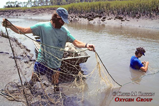 Tony Tucker And Heather O'Conner Setting Nets For Diamondback Terrapins
