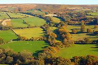 Farndale farm with autumn , North Yorkshire Moors National Park, England.