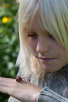 """Vierfleck-Kreuzspinne, Vierfleckkreuzspinne, Junge, Kind mit Spinne auf der Hand, """"Keine Angst vor Spinnen!"""", Weibchen, Kreuzspinne, Araneus quadratus, fourspotted orbweaver, Araneidae, Radnetzspinnen, Kreuzspinnen, orbweavers, orb-weaving spiders"""