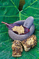 Awa root, Hawaiian medicinal plant