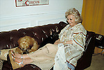 Zsa Zsa Gabor with her Dog in <br /> Los Angeles, California.<br /> September 1982