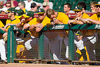The Baylor Bears bench during the game against the Rice Owls at Minute Maid Park on March 6, 2011 in Houston, Texas.  Photo by Brian Westerholt / Four Seam Images