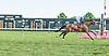 Barton Holt winning at Delaware Park on 8/3/15