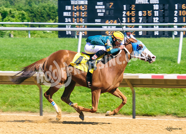 Ritzy Lass winning at Delaware Park on 6/9/16
