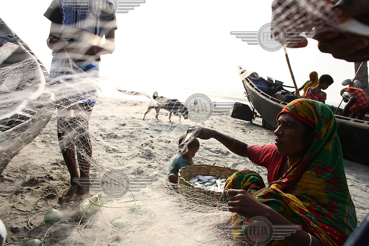 Fishermen shake their net to separate and collect the small fish that were caught at Kuakata beach in Patuakhali. Dried fish is a popular Bengali food, and 50,000 men are employed in the industry in the coastal areas. Around 300 tonnes of dry fish is produced each season, which runs from November to April.