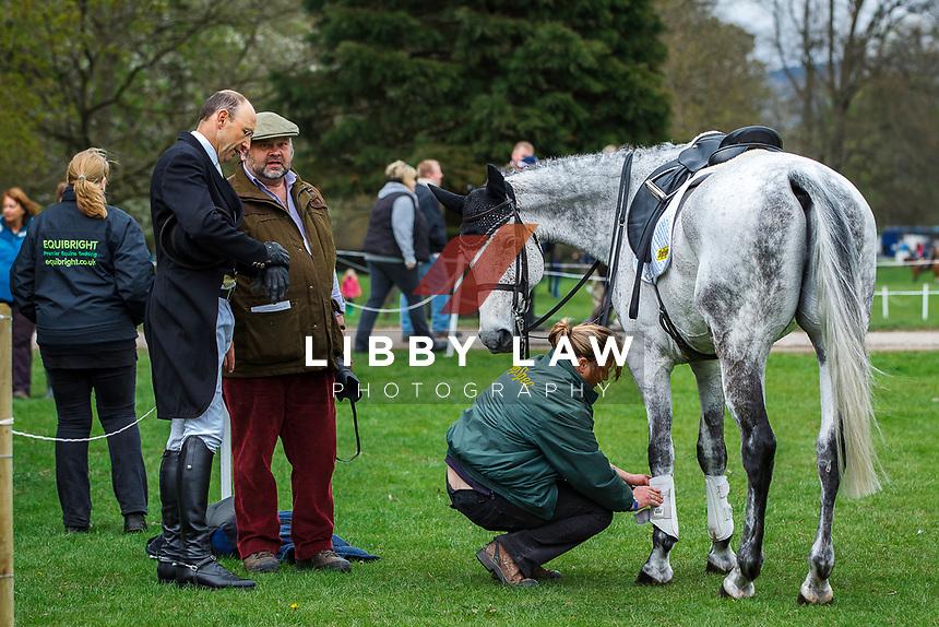 AUS-Bill Levett. 2013 GBR-Chatsworth International Horse Trials. Saturday 11 May. Copyright Photo: Libby Law Photography