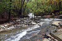 NWA Democrat-Gazette/FLIP PUTTHOFF <br /> Tanyard Creek flows in autumn splendor on Oct. 29 2019 downstream from the waterfall.