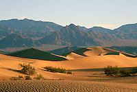 Death Valley National Park, California, CA, USA - Mesquite Flat Sand Dunes and Funeral Mountains near Stovepipe Wells at Sunrise