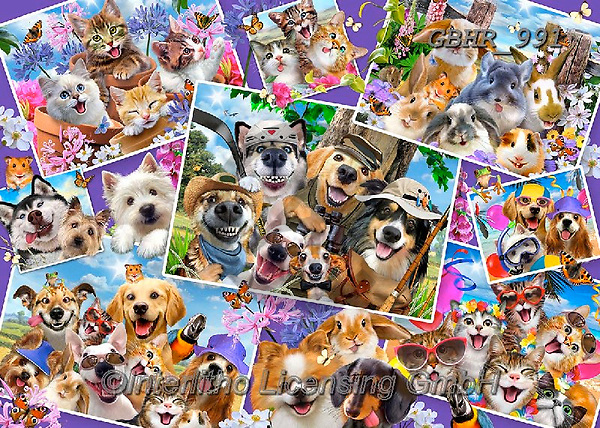 Howard, REALISTIC ANIMALS, REALISTISCHE TIERE, ANIMALES REALISTICOS, paintings+++++,GBHR991,#a#, EVERYDAY,collage,dogs,cats