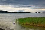 Węgorzewo, 2018.08.17. Burza nadciągająca nad jezioro Święcajty.