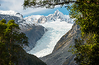 Fox Glacier in winter seen through rainforest, Westland Tai Poutini National Park, UNESCO World Heritage Area, West Coast, New Zealand, NZ