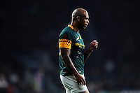 Lionel Mapoe of South Africa looks on during a break in play. Old Mutual Wealth Series International match between England and South Africa on November 12, 2016 at Twickenham Stadium in London, England. Photo by: Patrick Khachfe / Onside Images