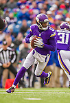 19 October 2014: Minnesota Vikings quarterback Teddy Bridgewater looks downfield for a receiver during the first quarter against the Buffalo Bills at Ralph Wilson Stadium in Orchard Park, NY. The Bills defeated the Vikings 17-16 in a dramatic, last minute, comeback touchdown drive. Mandatory Credit: Ed Wolfstein Photo *** RAW (NEF) Image File Available ***