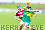 Determination on the face of Lixnaws John Griffin as he about to take a shot against Causeway in R2 of the Garvey Supervalu Hurling Championship on Sunday