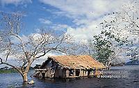 Flood, Pantanal Matogrossense, Brazil.