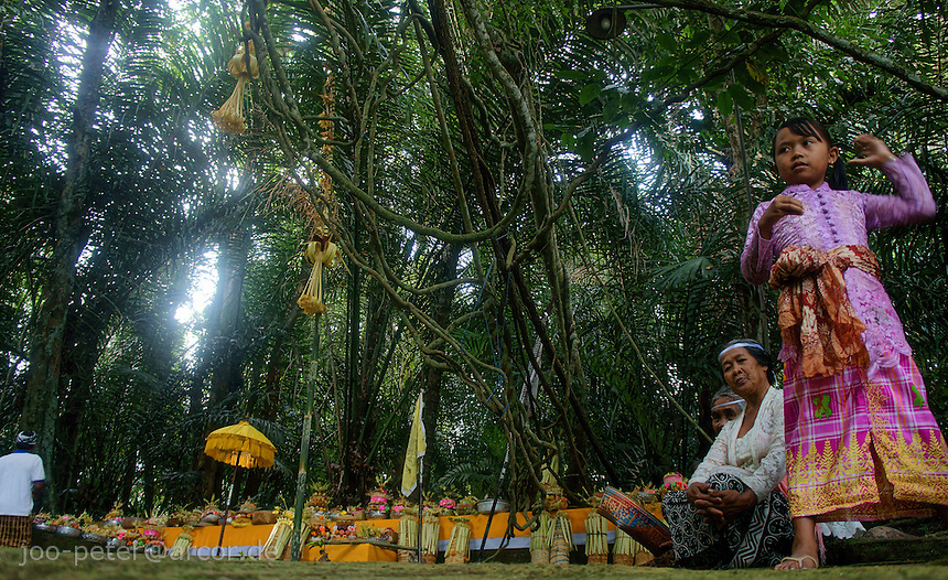 offerings are brought to a magic forest south of village Taro before night ceremonies for goddess Rangda, Bali, archipelago Indonesia. Ceremonies for goddess Rangda in Taro lasted all night, aprox. from 11pm to 5am. Spiritual cosmos of Balinese Hinduism,  rooted in local acient animism, consists of dual power, positive (Barong) and negative (witch Rangda), good and evil as a nescessary balance. Both opposite powers are worshipped and respected.