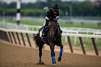 ELMONT, NY - JUNE 07: Restoring Hope with Humberto Gomez aboard gallops in preparation for the 150th Belmont Stakes at Belmont Park on June 07, 2018 in Elmont, New York. (Photo by Alex Evers/Eclipse Sportswire/Getty Images)