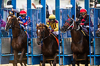 ELMONT, NY - JUNE 10: Irish War Cry and Rajiv Maragh break from the gate in the Belmont Stakes at Belmont Park on June 10, 2017 in Elmont, New York. (Photo by Alex Evers/Eclipse Sportswire/Getty Images)