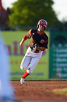 Batavia Muckdogs Aaron Knapp (5) running the bases during a game against the West Virginia Black Bears on June 29, 2016 at Dwyer Stadium in Batavia, New York.  West Virginia defeated Batavia 9-4.  (Mike Janes/Four Seam Images)