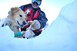 Rocky mountain avalanche rescue lab Betty and her trainer, ski patrolman Russ Reycraft perch above a snow hole where they found a buried skier during a training exercise (Crested Butte, Colorado)