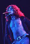 Led Zeppelin 1977.© Chris Walter.