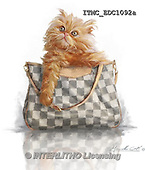 Marcello, REALISTIC ANIMALS, REALISTISCHE TIERE, ANIMALES REALISTICOS, paintings+++++,ITMCEDC1092A,#A# ,cats ,kittens