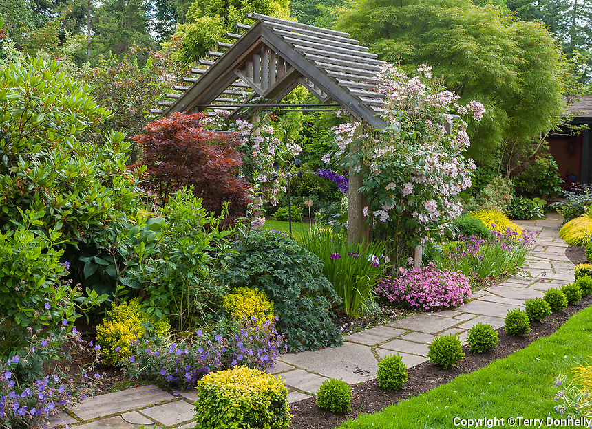 Vashon Island, WA: Stone pathway lined with boxwood and summer perrenials and rose pergola, Froggsong garden in summer